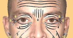 Interpretación del rostro. Descubre tus competencias innatas y asesoramiento para cualquier ámbito - WWW.MORFOPSICOLOGIA.ORG