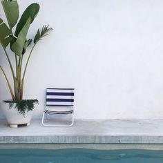 Beach House :: Holiday Home Decor + Design Inspiration :: Beachside Hideaway :: Free Your Wild :: See more Untamed Beach House Inspiration Outdoor Pool, Outdoor Spaces, Outdoor Chairs, Outdoor Living, Outdoor Decor, Pool Plants, Potted Plants, The Way Home, Pool Landscaping