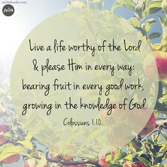 Colossians 1:10...A reminder on how we are to live.