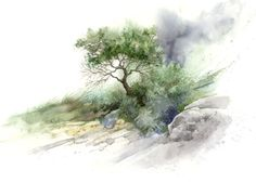 Brush and Stone Study by Steve Mitchell - Print available for purchase - dont know if watercolor Watercolor Landscape Paintings, Watercolor Trees, Easy Watercolor, Watercolour Tutorials, Watercolor Techniques, Landscape Art, Art Studies, Painting & Drawing, Art Prints