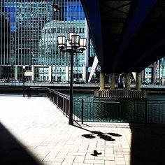 Can you spot the bird? #travel #london #city #bigsmoke #canarywharf #england #uk #adventure #photography #streetphotography #shadows #shadow #contrast #reflection #river #lamppost #light #skyscraper #bridge #bird #nature  #streetphotographer #urban #tourist #tourism #acjmedia #uk #lighting #ambient www.acjmedia.com by acjmediauk