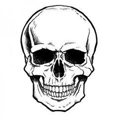 Simple skulls best simple skull drawing ideas on skull drawings simple sugar skull tattoo designs Simple Skull Drawing, Realistic Eye Drawing, Calavera Simple, Haare Tattoo Designs, Tattoo Fairy, Drawing The Human Head, Eye Drawing Tutorials, Skull Art, Skulls