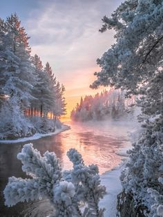 Finland by asko kuittinen vista landscape, winter landscape, christmas landscape, christmas scenery, Winter Pictures, Nature Pictures, Foto Picture, Winter Scenery, Winter Sunset, Winter Magic, Winter Snow, Cozy Winter, Snow Scenes