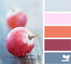Picked Hues by Design Seeds Red Color Schemes, Colour Pallete, Color Combinations, Color Palettes, Color Balance, Color Harmony, Design Seeds, Paleta Pantone, Orange Gris