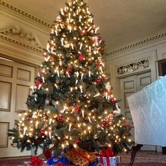 In the drawing room of Shirley Plantation sits this beautiful Christmas tree. Take a progressive tour this season! Stops include Shirley, Berkeley and Edgewood plantations.