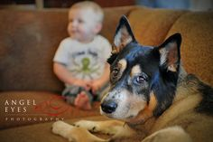 A baby boy and his dog. Photography by Hilda Burke   http://www.angeleyesphotography.com/  http://www.angeleyesphotographyblog.com/