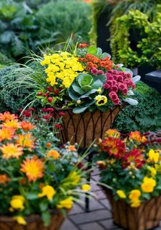 Outdoor Fall Decorating with Mums - Container garden with mums Fall Container Plants, Fall Containers, Container Flowers, Container Gardening, Fall Planters, Outdoor Planters, Flower Planters, Fall Flower Pots, Fall Flowers