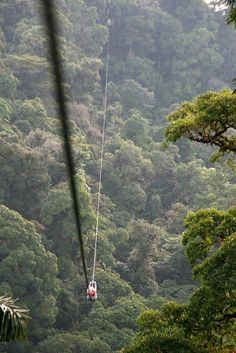 Largest zip line in the world! Costa Rica