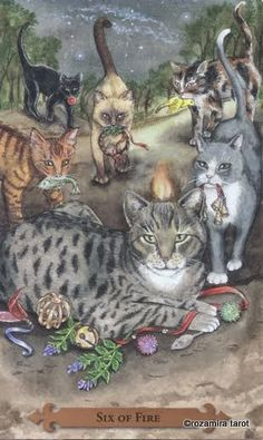 Tarot of the Mystical Cats - six of wands