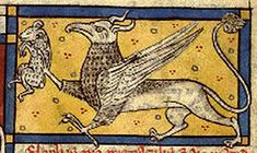 Medieval Bestiary : Griffin Gallery Bibliotheque Nationale de France, lat 3630, Folio 77r