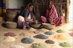Inde : laboratoire de mobilisations écologistes, comme celle de ces paysannes du Telangana, dans le centre du pays, qui ont choisi une agriculture bio, indépendante et collaborative. - novembre 15   Bénédicte Manier est journaliste. Elle parcourt l'Inde depuis plus de vingt ans. Elle est l'auteure d' Un Million de révolutions tranquilles (LLL, 2012), et de L'Inde nouvelle s'impatiente (LLL, 2014). L'extrait suivant vient de son (...)