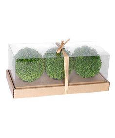 Another great find on #zulily! Grass Ball Décor - Set of Three #zulilyfinds