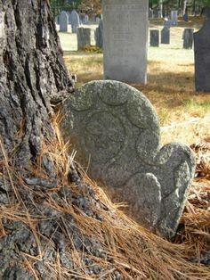 tree grown around stone South Cemetery Belchertown, Massachusetts