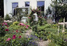 Der Cottage-Garten erfreut sich größerer Beliebtheit. Durch Pflanzenvielfalt gepaart mit ungezähmter Wildheit übt er eine besondere Anziehungskraft aus.