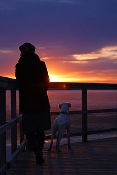 """""""Share the sunset with me.""""  (boxer)"""
