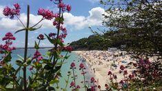 St Ives beach, Cornwall St Ives Beach, St Ives Cornwall, Dolores Park, Saints, Travel, Viajes, Destinations, Traveling, Trips