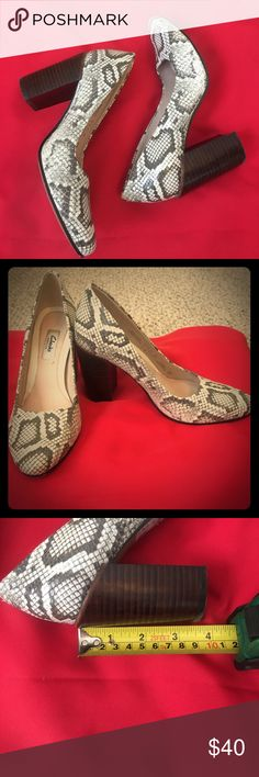 """Snakeskin pumps from Clarks Clarks """"Crumble Cream"""" snakeskin designed pumps. These are great shoes! Barely worn: great condition. Clarks Shoes Heels"""