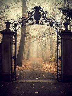 Spooky.                                       Karlsruhe Schloss, Germany (by r.dahl)