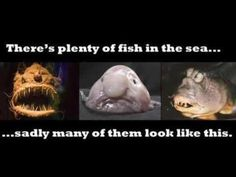Exactly why being single is not that bad. Lol, plenty of fish in the sea... actually look like fish.