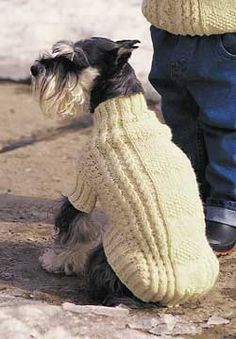 Cables and Hearts Dog Coat (knit)