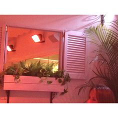 fake window box- mirror with shutters around it and a plant box below