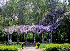 Monmouth Plantation Gardens - Natchez, Mississippi
