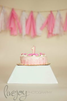 1 Year Old Photography and Cake Smash! With LiveJoy Photography #LiveJoyPhotography