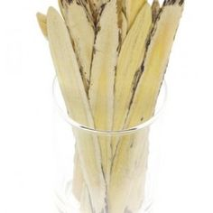 The Wonderful Chinese Herb Huang qi (also known as Astragalus) - Jennifer Dubowsky, DIPL.Ac.