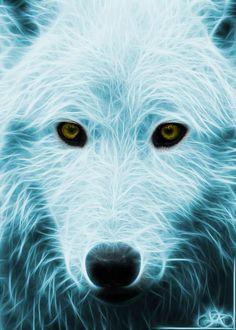 Wolf portrait fractalized by Norhi