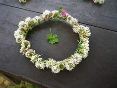 花かんむり シロツメクサ - Google 検索