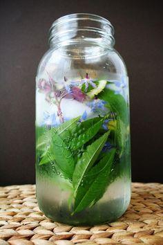 Herbal Infused Water - tend magazine