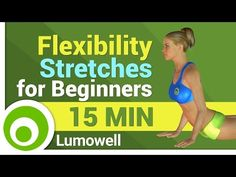 Flexibility Stretches for Beginners - YouTube