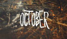 The Endless Autumn : Photo