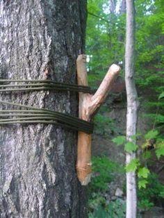 Northeast Voyageur: Quick Camp Tip - A Camp Hanger