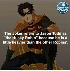 Im Batman, Batman Robin, Gotham Batman, Tim Drake, Nightwing, Robins, Barbara Gordon, Damian Wayne, Red Hood Jason Todd