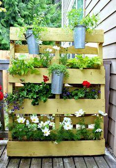 Jardín vertical hecho con tarima de madera