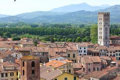 Lucca, Italy. More European Cities to visit on theVintageMixer.com/travels #europe #italy