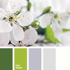 Color Palette #3309