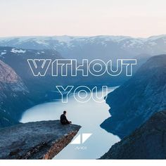Avicii - Without You Feat . Djmarcosd Remix