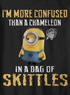 150 Funny Minions Quotes Sayings and Pics 46 Funny Minion Memes, Minions Quotes, Funny Jokes, Hilarious Sayings, Minion Humor, Welcome To My Life, Minions Love, Minions Friends, Minion Stuff