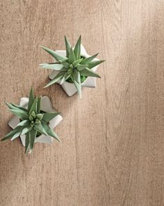 Bringing nature indoors doesn't always mean high maintenance. Wood-look tiles from Imola's Wood 1a4 collection offer natural looking grains without the stress of water damage or damage from shoes and furniture. Take a stress-free approach to the natural elements.