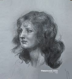 I drew this for a Tuesday by Noon art group and thought it was worth sharing with others. My resource was a photo of one of the first Miss America from Philadelphia....with  modernized hair.