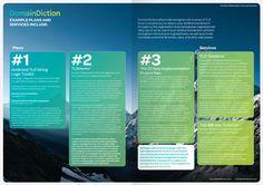 DomainDiction brochure spread
