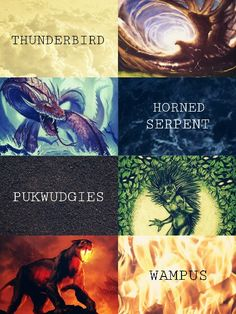 ○ The Official Ilvermorny School Houses ○ THUNDERBIRD HORNED SERPENT PUKWUDGIES WAMPUS http://www.hypable.com/north-american-wizarding-school-ilvermorny-houses/  http://www.fantasticbeastsmovies.com/index.php/2016/05/08/ilvermorny-houses-revealed/