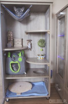 Love the different areas & toys in this cage, but think there could be more hopping ledges, branches etc to use the space, especially at the top Diy Chinchilla Toys, Cage Chinchilla, Ferret Cage, Rat Cage, Chinchillas, Pet Rats, Hamsters, Degu Cage, Parakeet Cage