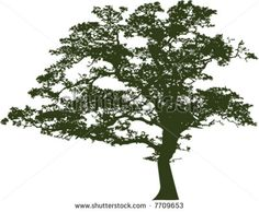 Oak tree black white Free vector for free download about (6) Free ...