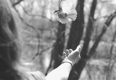 The Power Of Letting Go - inspiration Free People Blog, Free People Clothing, Positive Attitude, Pet Birds, Wonders Of The World, Cool Words, Letting Go, Photo Art, Life Is Good
