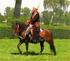 First reference to the Hucul horse can be found in 1603. Originally bred in modest and harsh conditions of Bukovina Carpathians, Hucul has all features of a wild horse. In 1856 Hucul Stud Luina (Romania) was built close to the Radovecky Stud. During the period of the Austro-Hungarian Monarchy, that encompassed the native region of the Hucul, they began to be systematic selected for use as cavalry mounts