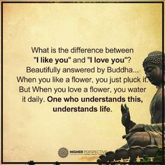 """The Difference Between """"I Like You"""" And """"I Love You"""""""