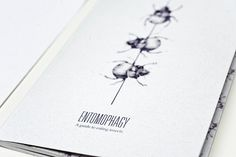 A Guide to Entomophagy